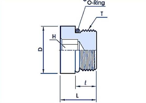 Blanking Plugs with O Ring Flareless Fitting